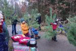 Weihnachtsbaumschlagen in der Parforceheide